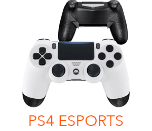 ps4 esports controller with paddles
